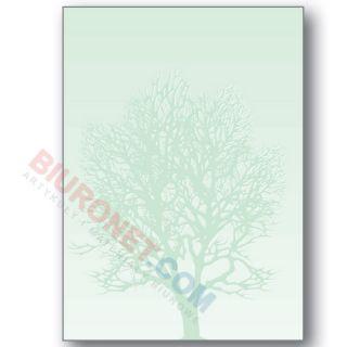 Arkusz barwny Drzewo A4/100g, papier ozdobny
