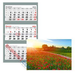 Kalendarz wiszący 2020, trójdzielny Standard, motyw Maki